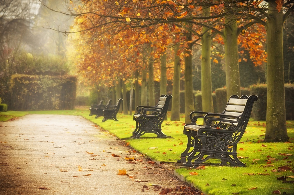 The Regent's Park, London